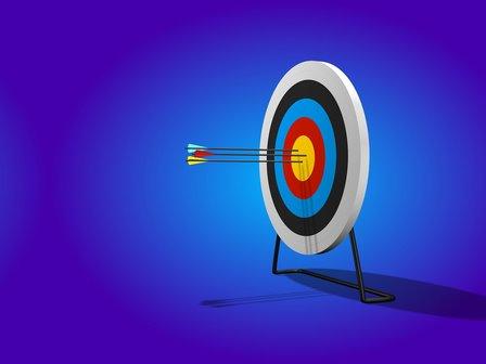 The success factors in the development of online shops